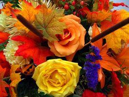 Thanksgiving Bursdag Ideas