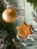 Jule programmer for barn i Tennessee