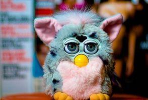 om Furbys