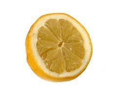 Lemon Batteri Eksperimenter