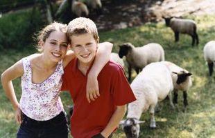 Hvordan Kids Kan hjelpe til på en Family Farm