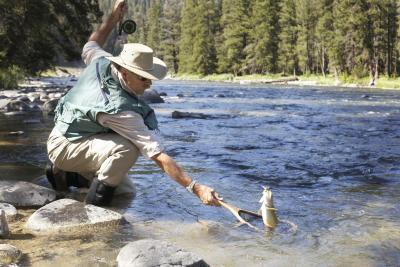 Mønster For hvordan å fly fisk for ørret med lakserogn