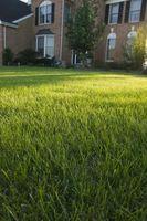 Hvordan lage Hopscotch Bokser på Grass