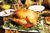 Hvordan velge en Thanksgiving Tyrkia