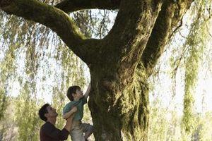 Hvordan forenkle livet ditt med Kids