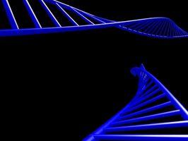 RNA Vs. DNA struktur