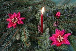 Hvordan lage en jule blomst midt
