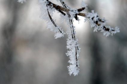 Hva er den generelle strukturen av en Snowflake?