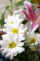 Mamma Wedding Bouquet Ideer