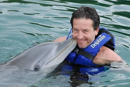 Svømme med delfiner i Karibien