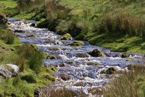 Hvordan finne Fresh Water