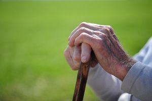 Spørsmål til Spør av Elder Care Assistance Selskaper