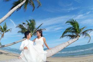 Cool Wedding Ideer for Beach