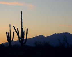 Retirement Steder i Arizona