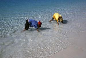 Beach Sommerferie for barn
