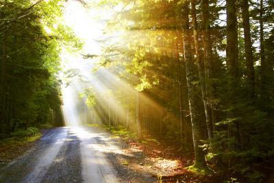 Hva er Virtual stråler av lys?