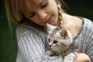 Aktiviteter for å lære barn Medfølelse til dyr