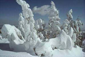 Hvordan beregne regn til snø