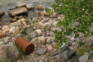 Ferskvann Forurensning Science Prosjekt