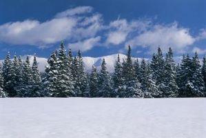 Fakta om værforholdene i Mount Washington