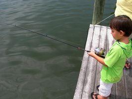 hekte fiskekonkurranse