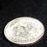 Hvordan bruke dollar mynter