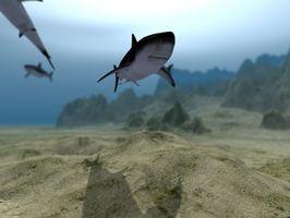 Killer Sea Monster Games for en PS2