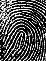 Forensic fingerprinting Fakta