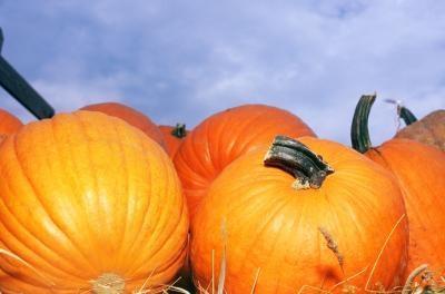 Halloween Alternativer for kirken