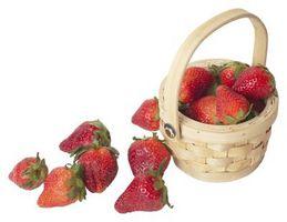 Hva er de vanligste europeiske arter av Strawberry?