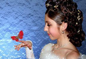 Hvordan finne ekte sommerfugler for et bryllup