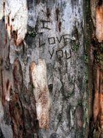 Trær for Bryllup gaver