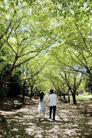 Nyttige tips om Premarital Rådgiving