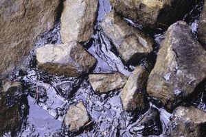 Virkningene av oljeforurensing på akvatiske økosystemer