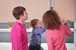 Foster Parent & Feste Issues