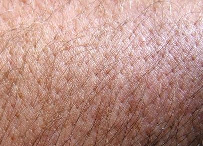 Skin Cell Informasjon