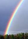 Hvordan lage en Rainbow Science Experiment: Brytnings
