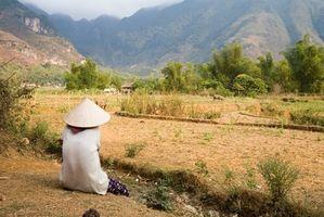 Hvordan Paint vietnamesiske Miniatures