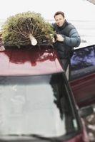 Hvordan Tie en juletre på taket av en bil uten Rack
