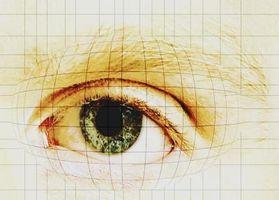 Hvilken del av øyeeplet Do lysstrålene inn i?
