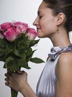 DIY brude Blomster & Roses i California