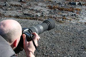 Digital Photography Tips for Pentax DSLR