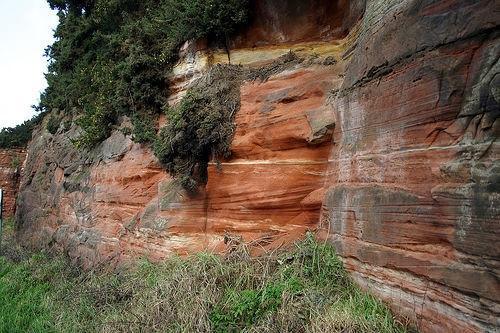Typer Rocks & Fossiler