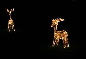 Utendørs dekorere til jul