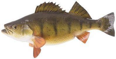 Historisk Informasjon om Perch Fish