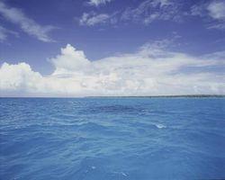 Ocean Effekter av kalkstein
