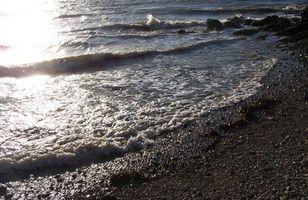 Typer av Ocean Tides