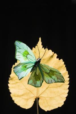 Svakheter ved en Butterfly