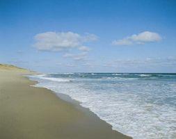 Hvordan finne gratis aktiviteter for barn på Cape Cod