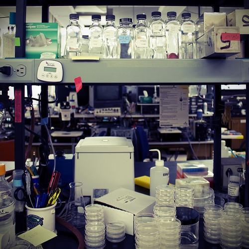 Generelle Lab Sikkerhetsregler